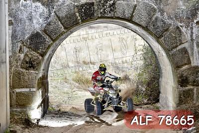 ALF 78665