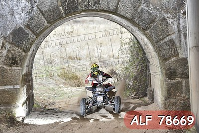 ALF 78669