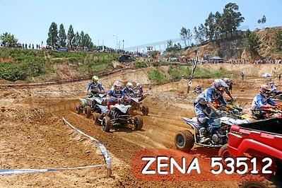 ZENA 53512