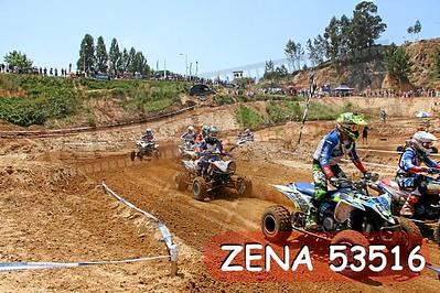 ZENA 53516