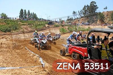ZENA 53511