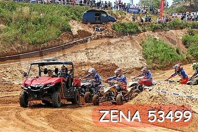 ZENA 53499