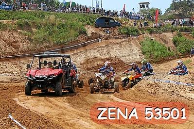 ZENA 53501