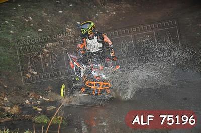 ALF 75196