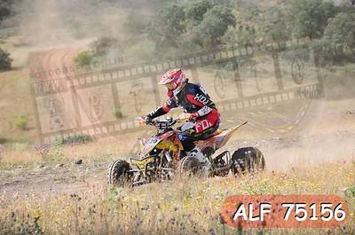 ALF 75156