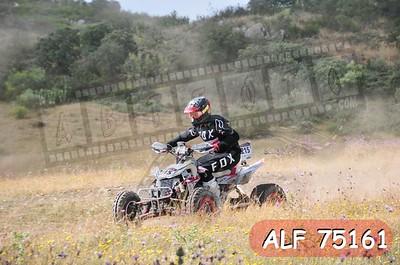 ALF 75161