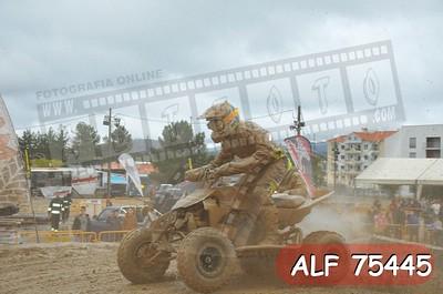 ALF 75445
