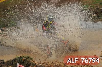 ALF 76794
