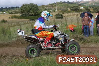FCAST20931