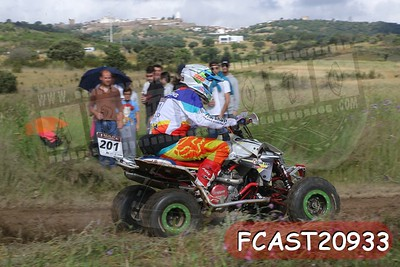 FCAST20933