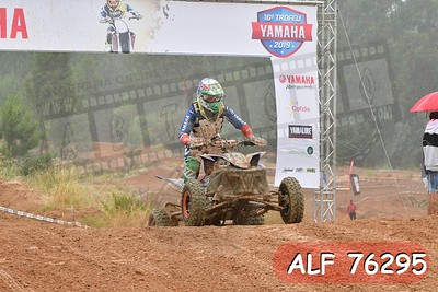 ALF 76295