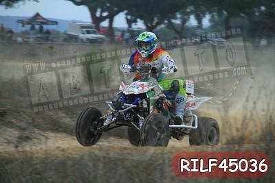 RILF45036