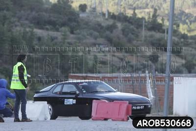AROB530668