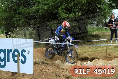 RILF 45419
