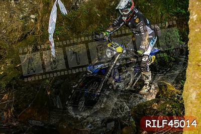 RILF45014