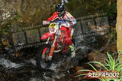 RILF45002