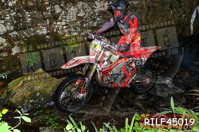 RILF45019