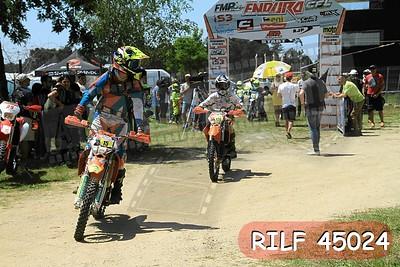 RILF 45024