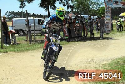 RILF 45041