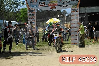 RILF 45036
