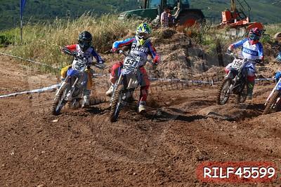 RILF45599