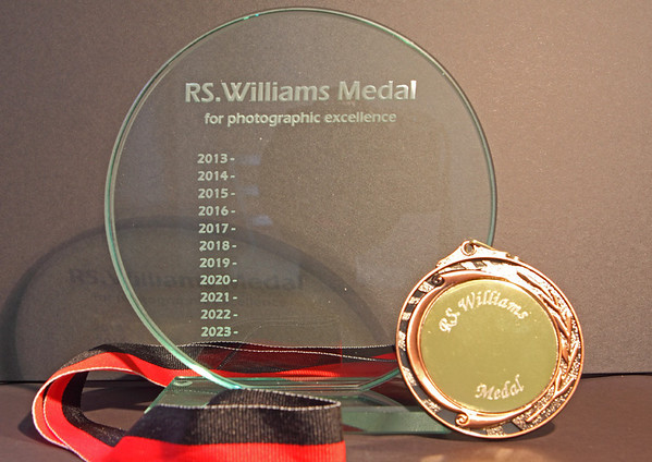 RS.Williams Medal 2013.