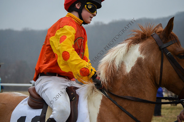 GSV Point to Point - PONY & JUNIOR Races 032914