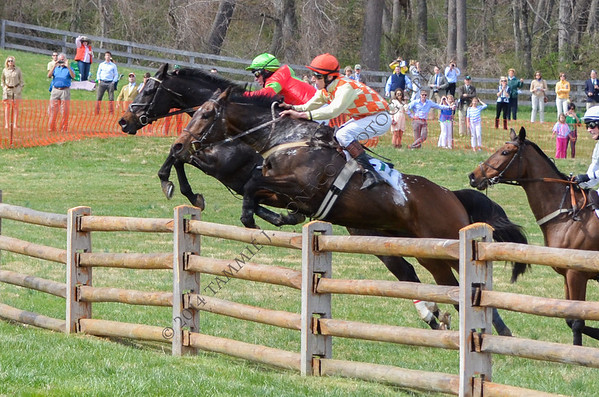 Grand National Races - April 19, 2014