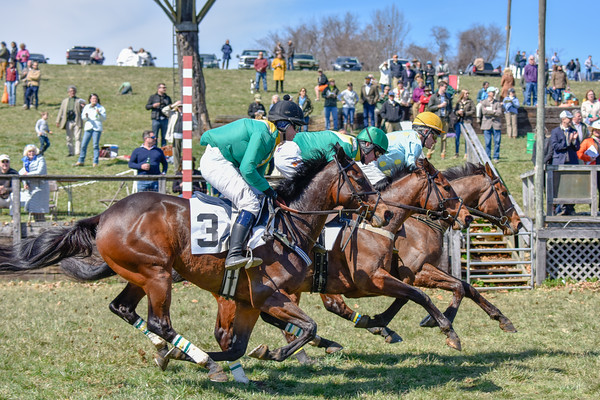 Green Spring Valley Point-to-Point 033118