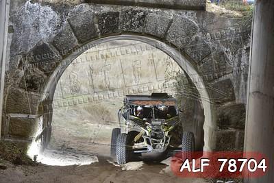 ALF 78704