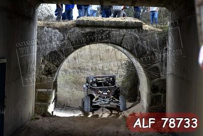 ALF 78733