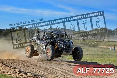 ALF 77725
