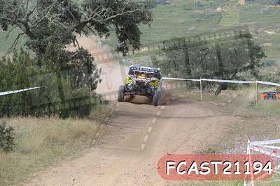 FCAST21194