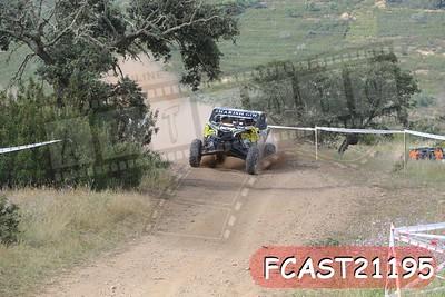 FCAST21195