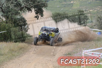 FCAST21202