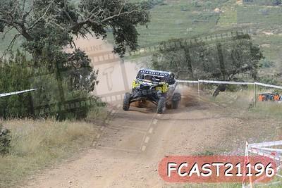 FCAST21196