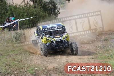 FCAST21210