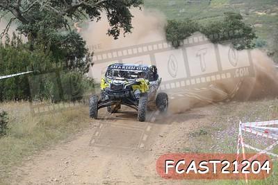 FCAST21204