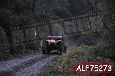 ALF75273
