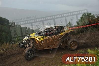 ALF75281