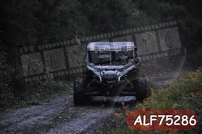 ALF75286