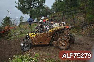 ALF75279