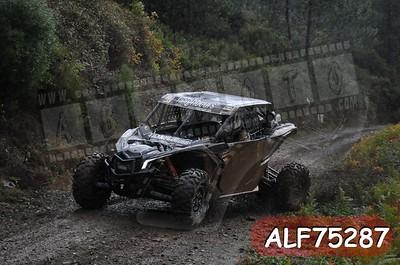 ALF75287