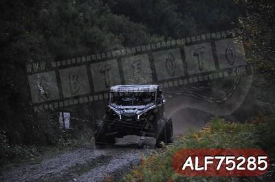 ALF75285
