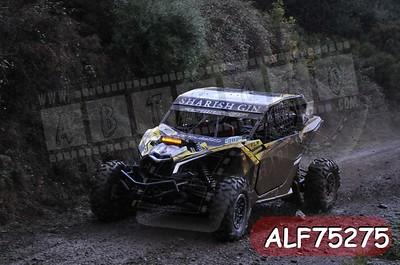 ALF75275
