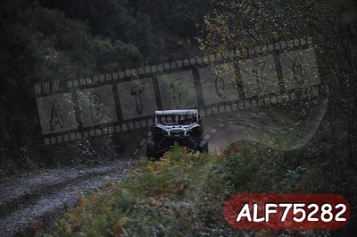 ALF75282