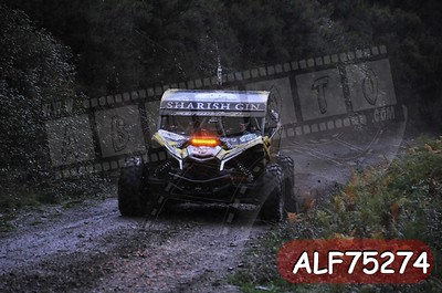 ALF75274