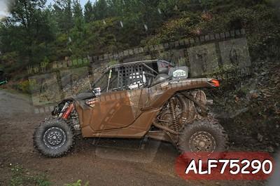 ALF75290