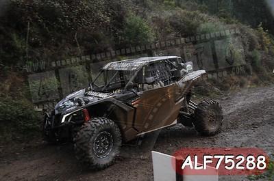ALF75288
