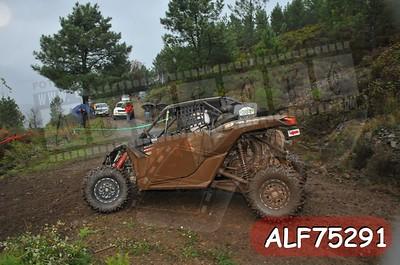 ALF75291